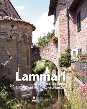 Un folto pubblico è intervenuto alla presentazione del volume dedicato a Lammari e promosso dal Comune